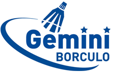 Volleybalvereniging Gemini Borculo