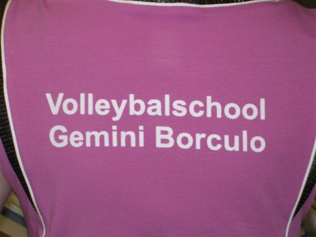 Volleybalschool Gemini